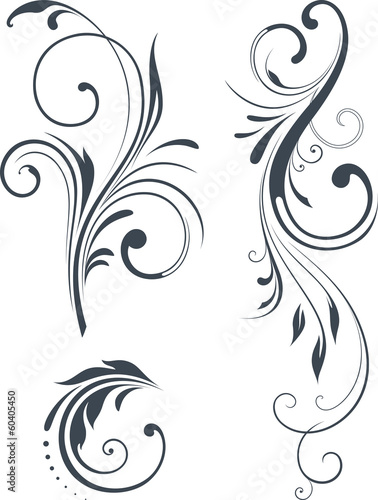 vector_scroll_design