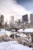 Central Park,New York - 60407269