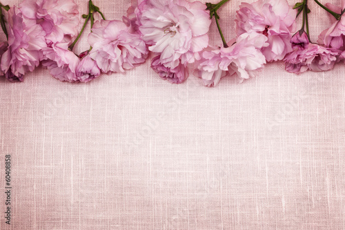 Fotobehang Kersen Cherry blossoms border on pink linen