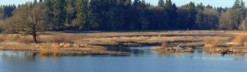 Tualatin national wildlife refuge Oregon.