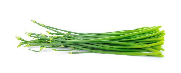 Onion Flowers, isolated on white background