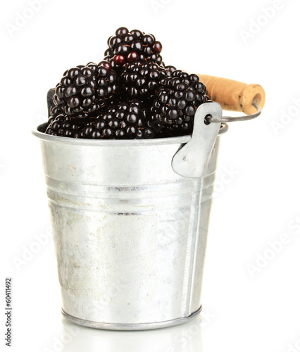 Sweet blackberry in pail isolated on white