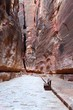 The Siq Gorge, Petra