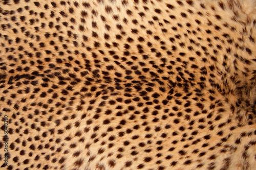 Fotobehang Stof Cheetah skin background