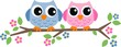 two sweet owls header picture