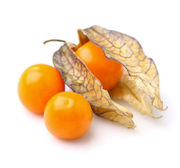 Physalis in closeup