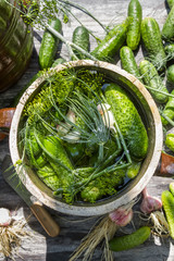 Pickling cucumbers in the countryside