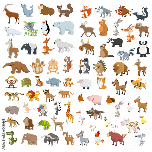 Extra big animals and birds set