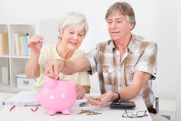 Senior Couple Calculating Coins