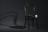 Retro chair and a white rose on a dark background.