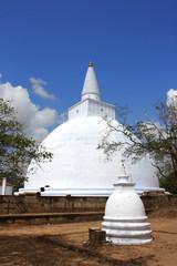 Sri Lanka - Anuradhapura (Dagoba Ruvanvelisaya)