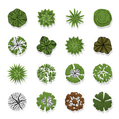 Trees top view for landscape vector illustration