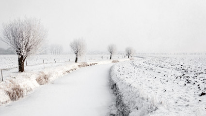 Winding iced ditch in a wintry Dutch polder landscape
