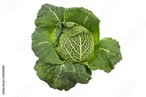 Green Savoy cabbage on a white background.