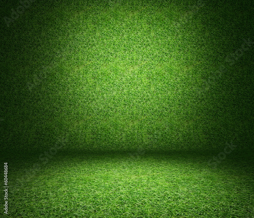 grass used as background.