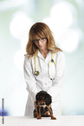 Young Puppy Dog and a Female Veterinarian