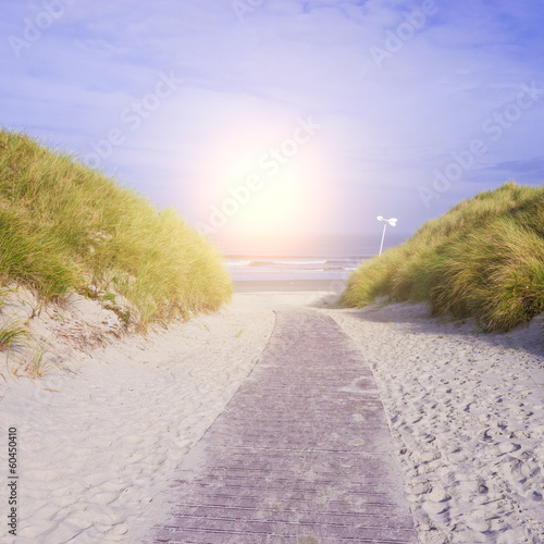 canvas print picture pfad zum meer