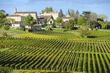 "Постер, картина, фотообои ""Vineyards of Saint Emilion, Bordeaux Vineyards"""