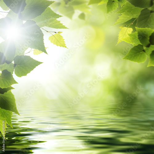 On the forest lake, abstract environmental backgrounds