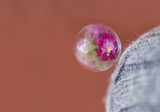 Bubble and reflection