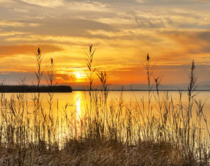 amanece detras de la orilla