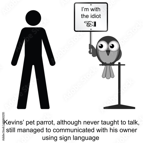 Kevin and his pet parrot cartoon