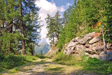 Höhenwanderweg im Schweizer Lötschental