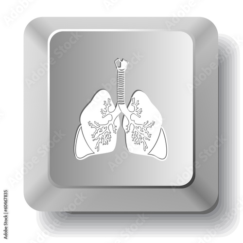Lungs. Vector computer key.