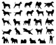 Black silhouettes of dogs, vector