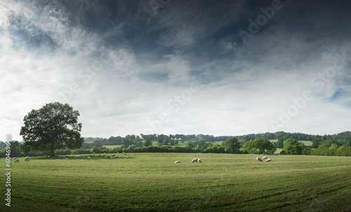 View of the countryside, England