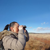 woman with binoculars birdwatching, copy space on blue sky poster