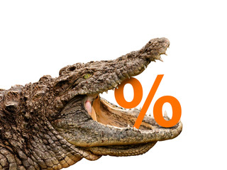 Percentage signs eaten by crocodile for sale, crash or discount.