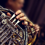 Hands of the man playing the French horn