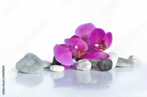 canvas print picture orchidée et cœur en pierre
