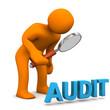 Manikin Loupe Audit