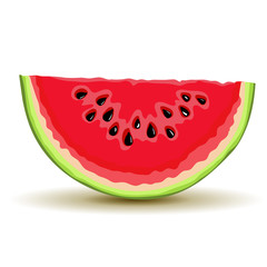 Slice of watermellon in vector