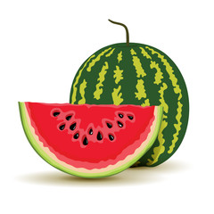 Slice and watermelon in vector