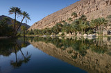 Fototapety Water pools in Wadi Bani Khalid, Oman