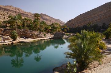 Water pools in Wadi Bani Khalid, Oman, Arabia