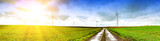 Panoramic landscape with country road - 60486495