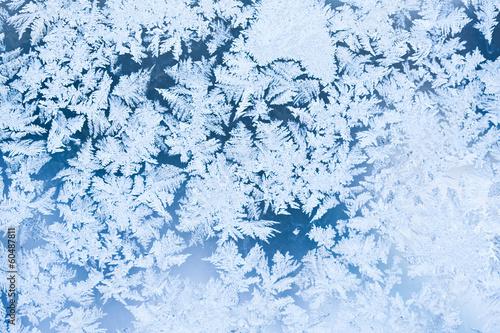 Fotobehang Antarctica 2 Frost pattern