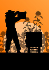 Beekeeper working in apiary vector background in sunflower field