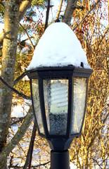 Garden lantern in the winter