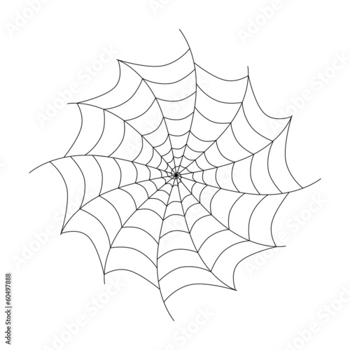 Vector Black Cobweb Isolated on White Background