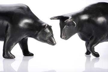 Bär vs Stier
