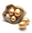 Golden egg in canvas sack