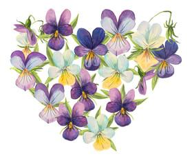 Heart violets