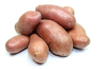 pommes de terre roses sur fond blanc