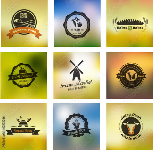 Farm food vector icons, labels and badges