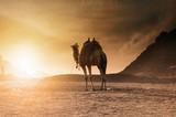 Fototapeta Транспорт пустыни